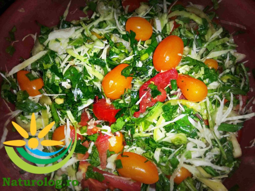 salata-cruditati-bio