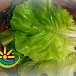 Salată de Avocado cu Salată Verde și Usturoi