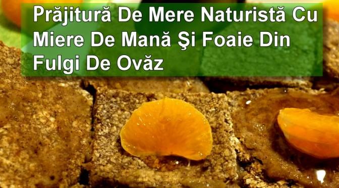 Prăjitură Cu Mere Naturistă Cu Miere De Mană Și Foaie Din Fulgi De Ovăz