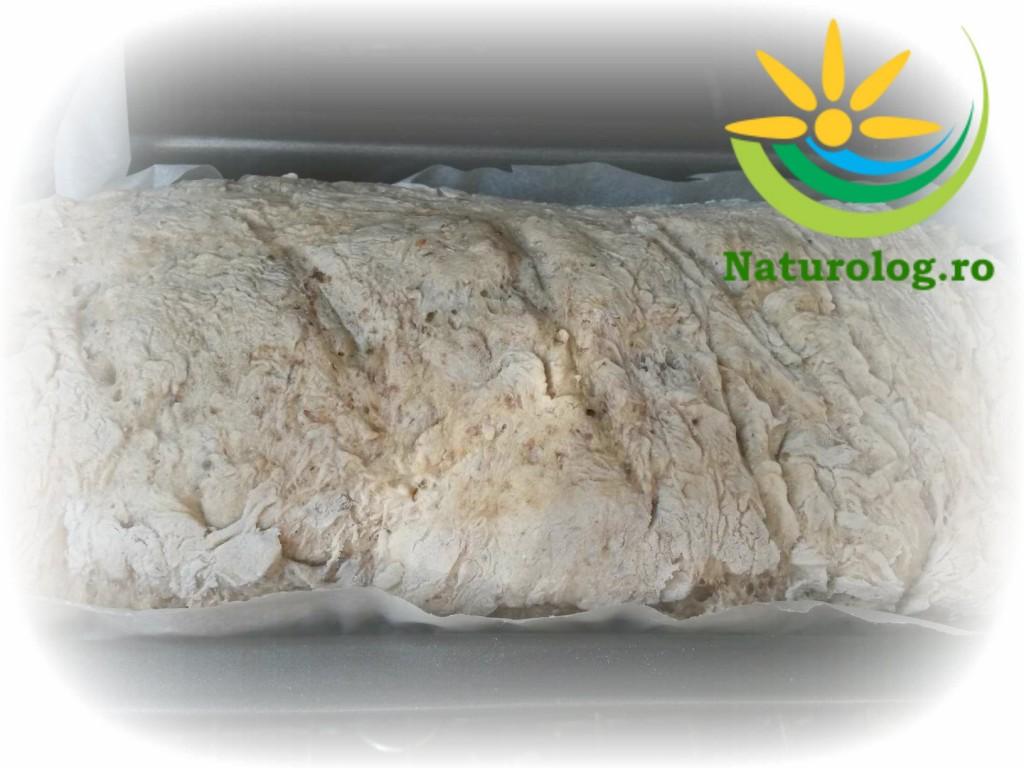 pâine-casă-mix-făină