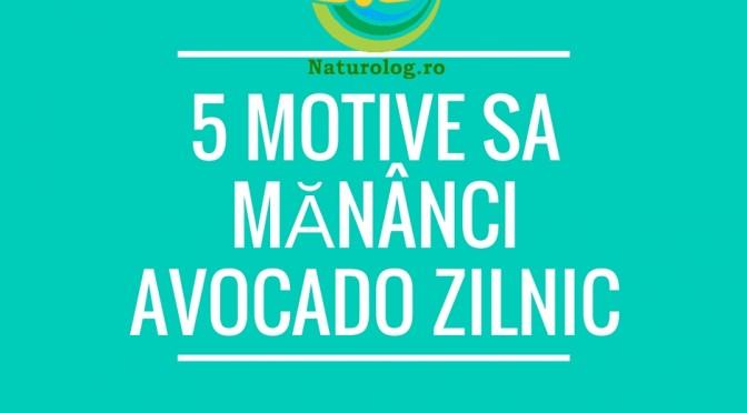 5 Motive Sa Mănânci Avocado Zilnic